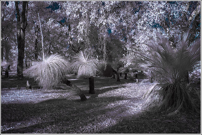 IR colour trials