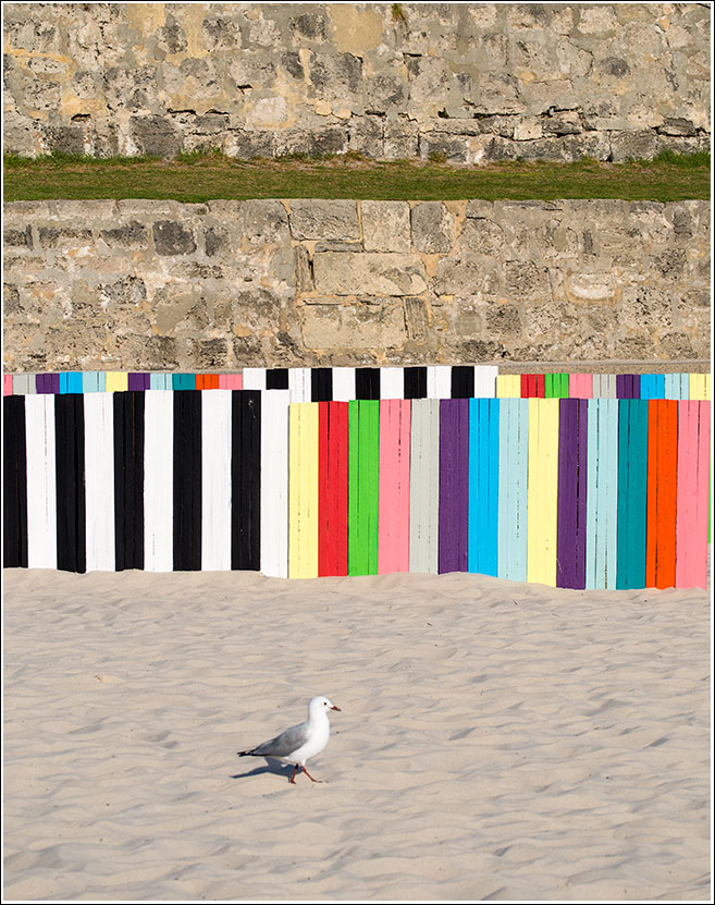 Francesca Mataraga (NSW), a to b, Sculpture by the Sea, Cottesloe 2014.